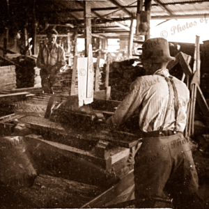 Sawing logs at Garrett's sawmill Second Valley, South Australia, 1954