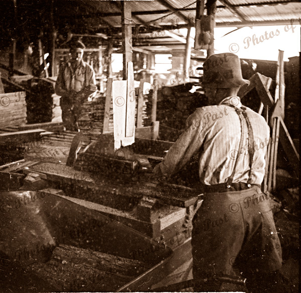 Sawing logs at Garrett's sawmill Second Valley, South Australia, 1954