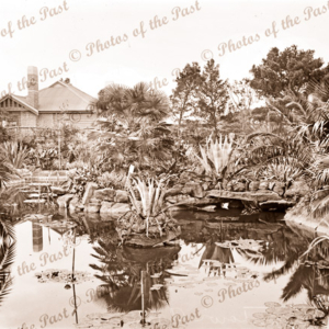 Botanic Gardens at Williamstown, Victoria. c1920s