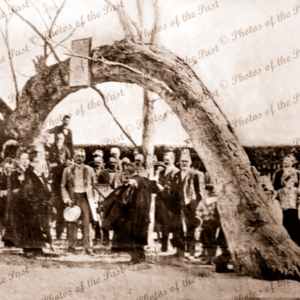 Ceremony at the Old Gum Tree, Glenelg, SA. South Australia, c1860s.