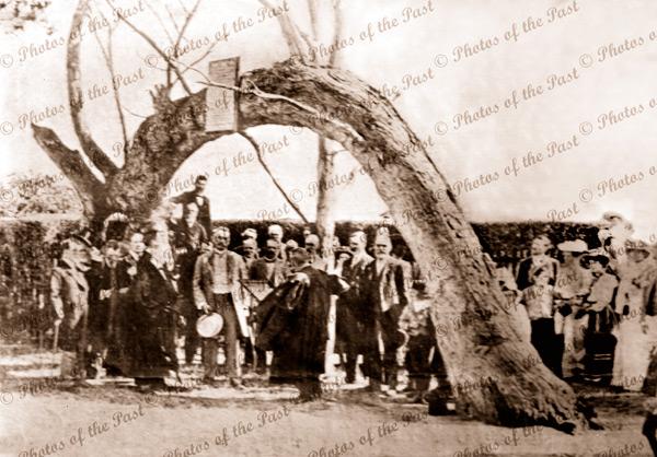 Ceremony at the Old Gum Tree, Glenelg, SA. South Australia, c1860s.