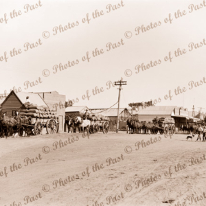 Carting wheat at Sheep Hills, Victoria. c1940s.