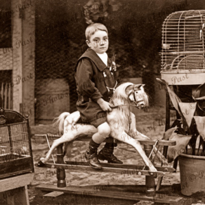 Boy on rockinghorse. Magpie & canaries in cages. c1890s