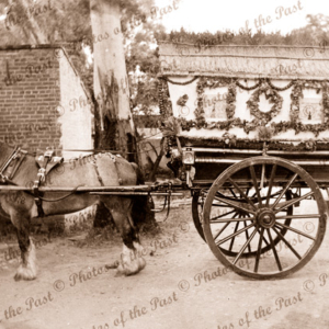 Decorated horse & cart that won 1st Prize, Gardener's Annual Picnic, SA. South Australia. c1940s