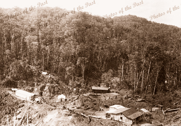 Aerial of buildings in a clearing Papua New Guinea #4. c1950s?