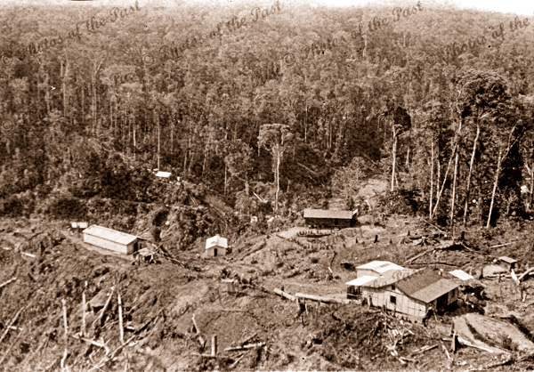 Aerial of buildings in a clearing Papua New Guinea #5. c1950s?
