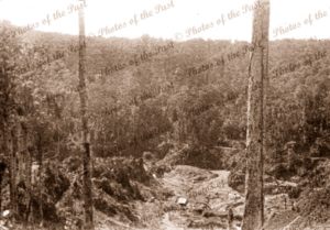 Aerial of buildings in a clearing Papua New Guinea #7 c1950s?
