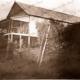 Established house Papua New Guinea #9. c1950s?
