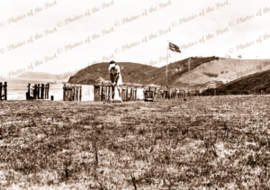 Eastern View Golf Course. Lady teeing off. Great Ocean Road. Victoria. c1920s